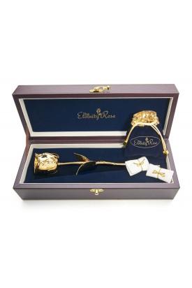 Rose trempée d'or avec ensemble de bijoux rouges. Style feuille