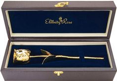 Gold Eternity Rose